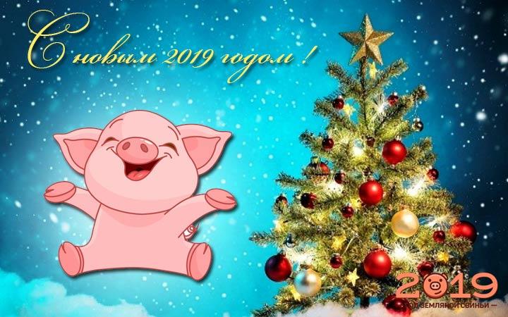 понадобилось интересные открытки с новым годом 2019 свиньи как